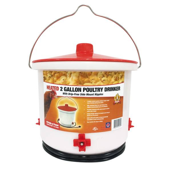 Heated 2 Gallon Poulty Drinker