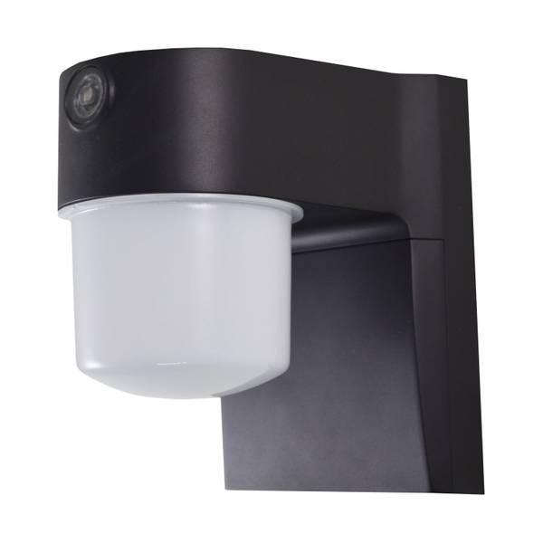 700 Lumen Dusk-to-Dawn Security Light