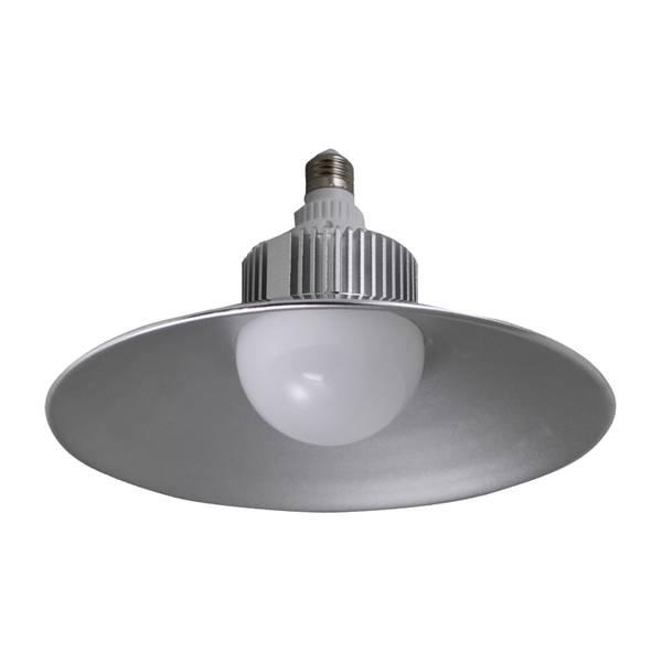 2500 Lumen LED Utility Light Bulb