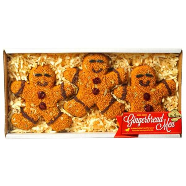 Bird Seed Gingerbread Men