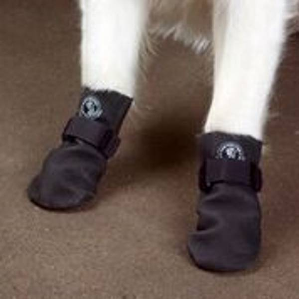 Black Paw-Tectors Waterproof Boots for Dogs
