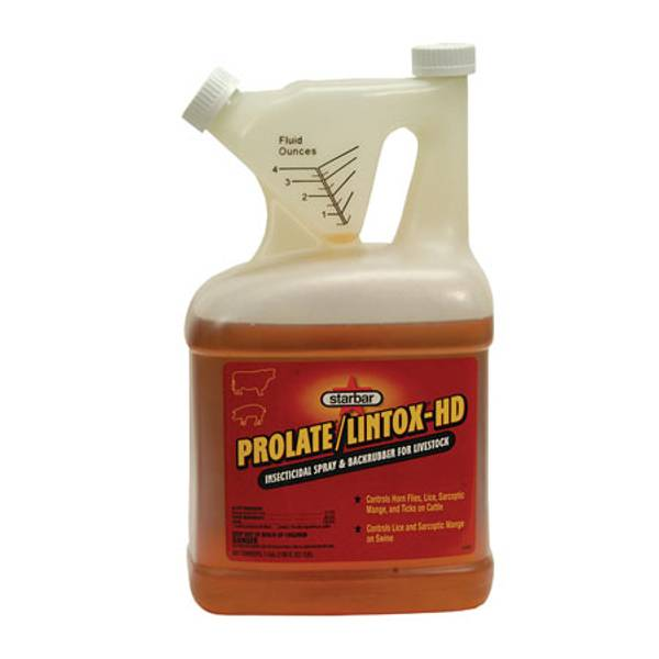 Prolate / Lintox - HD