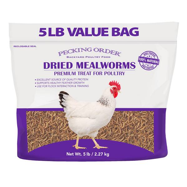 5 lb Mealworms