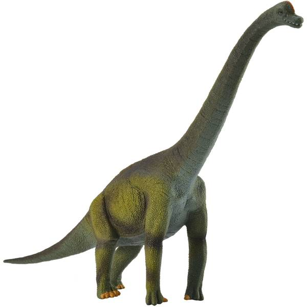 CollectA Standing Brachiosaurus Dinosaur Kid Figurine