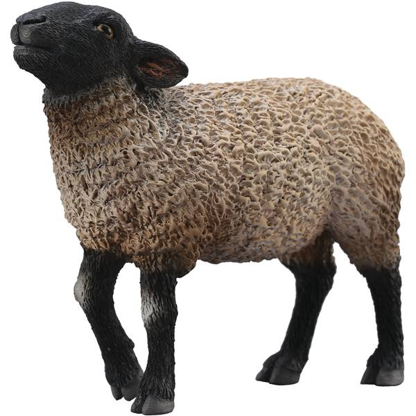 CollectA Standing Suffolk Sheep Kid Figurine