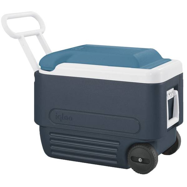 Maxcold Ice Chest