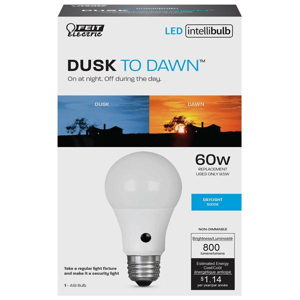 60 Watt Intellibulb LED
