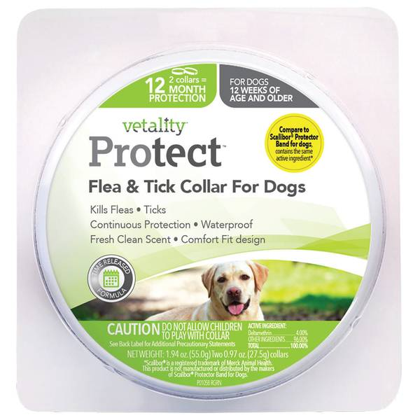 12 Month Flea and Tick Dog Collar