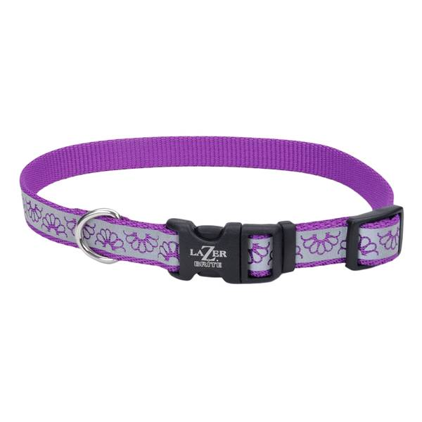 "5/8""x12-18"" Lazer Brite Purple Daisy Collar"