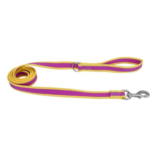 """1""""x6' Pro Reflect Purple/Yellow Leash"""