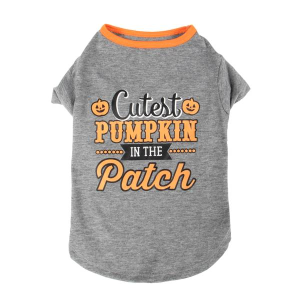 Grey Cutest Pumpkin Patch Pet T-Shirt