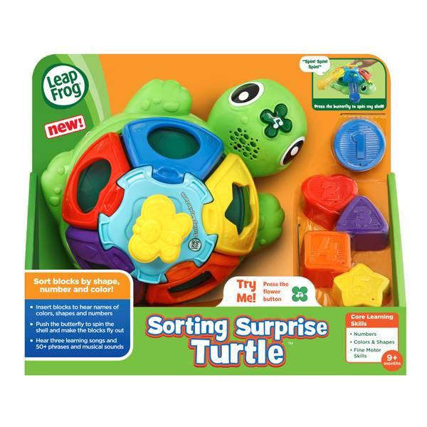 Sort 'n Spin Turtle