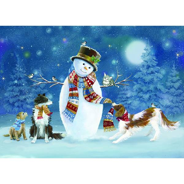 16-Count Winter Fun Holiday Cards