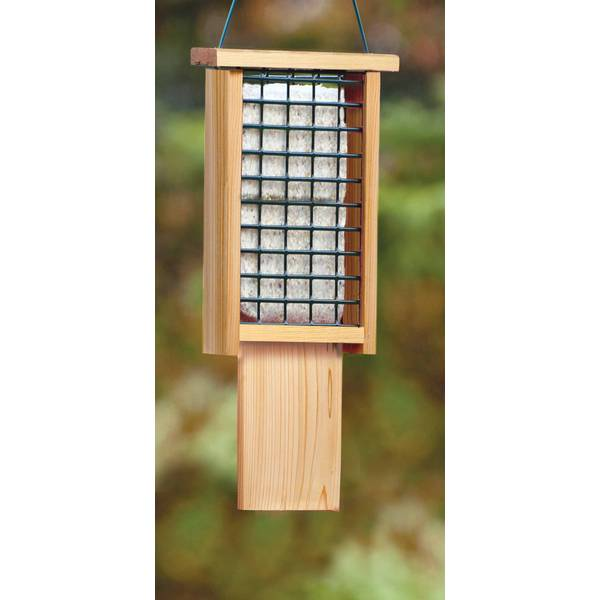 Tail-Prop Double Suet Feeder