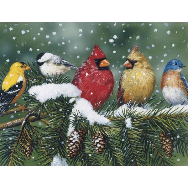 12-Count Bird Notelet Christmas Cards