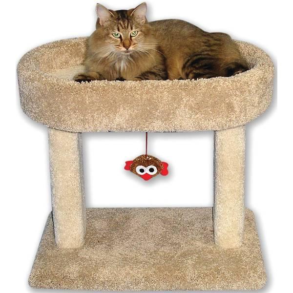 Kitty Cradle