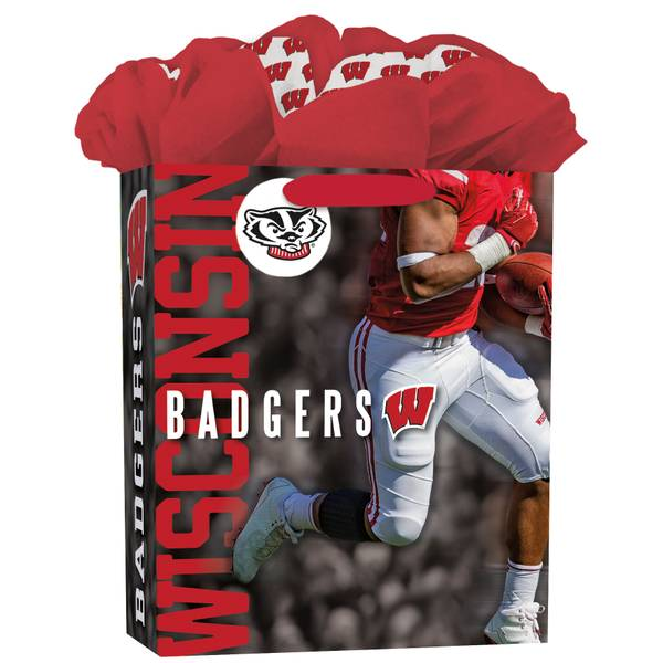Wisconsin Badgers Large GoGo Gift Bag