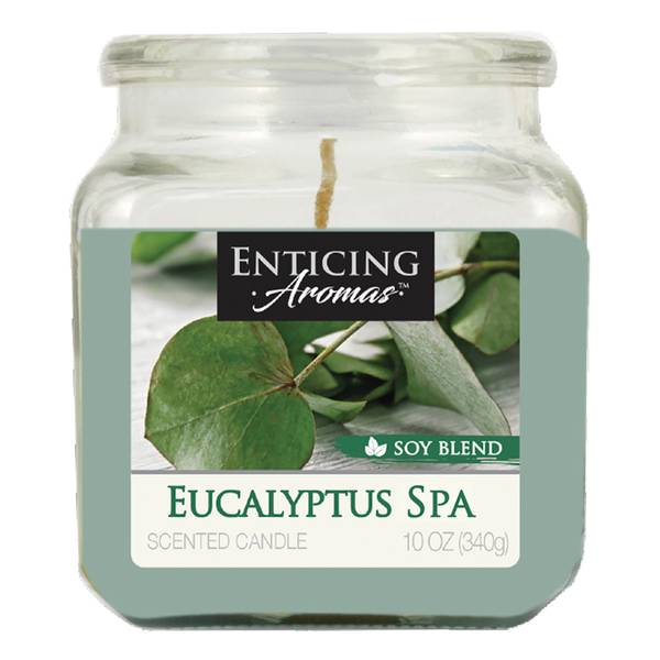 10oz Eucalyptus Spa Candle