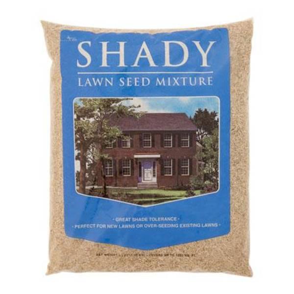 Dense Shade Mix Lawn Seed Mixture