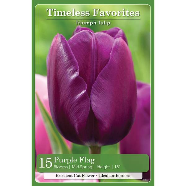 Photo of 15-Count Tulip Purple Flag