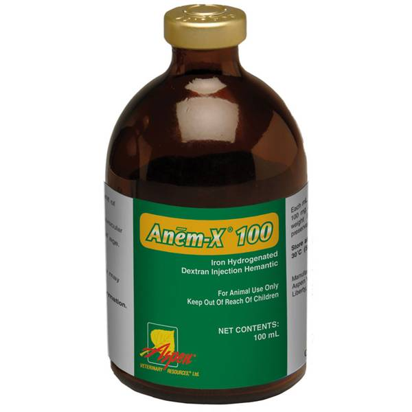 Anem-X 100 Iron Dextran Swine Supplement