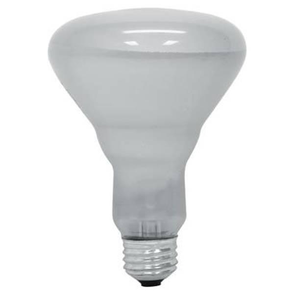 Soft White Indoor Reflector Flood Light Bulb