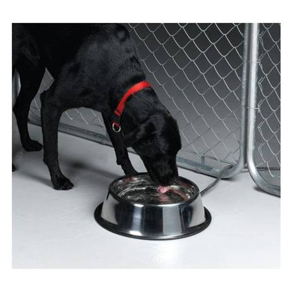 Stainless Steel Heated Pet Bowl