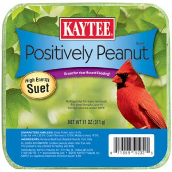 Positively Peanut Suet