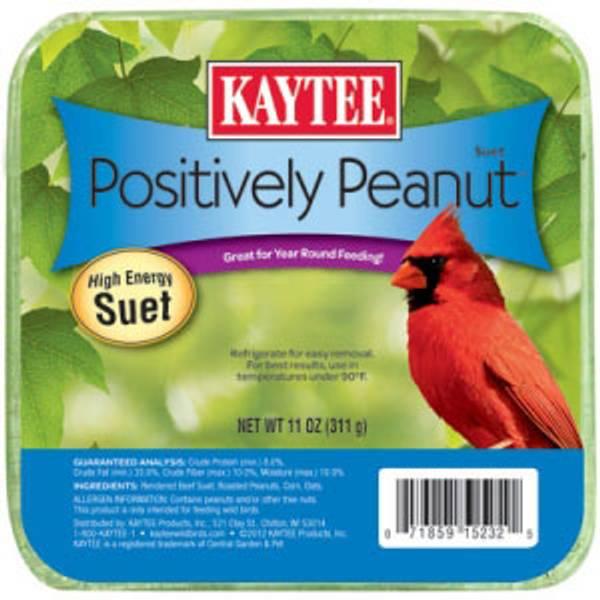 Positively Peanut Suet