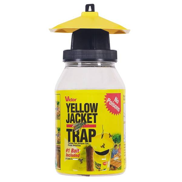 Yellowjacket & Flying Insect Trap