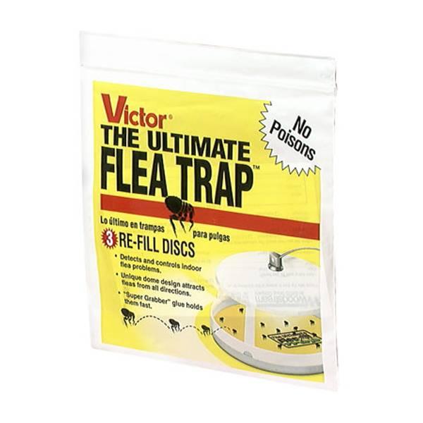 The Ultimate Flea Trap Refills