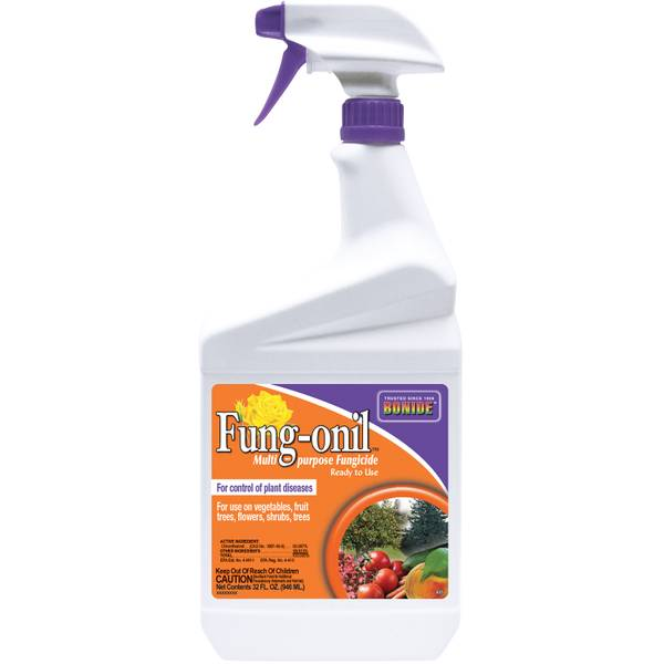 Daconil Fungicide Ready-To-Use