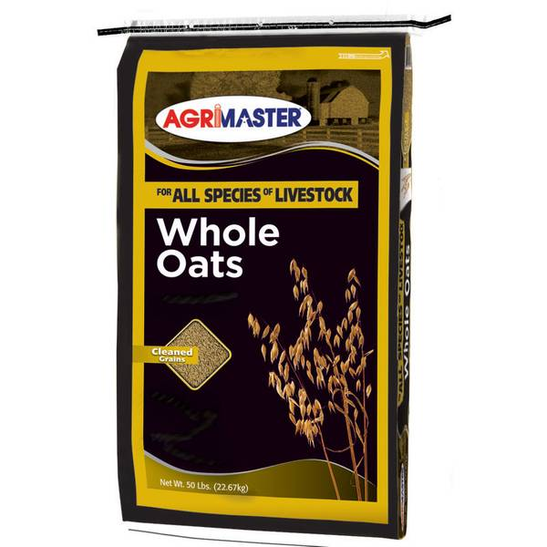 Whole Oats Feed