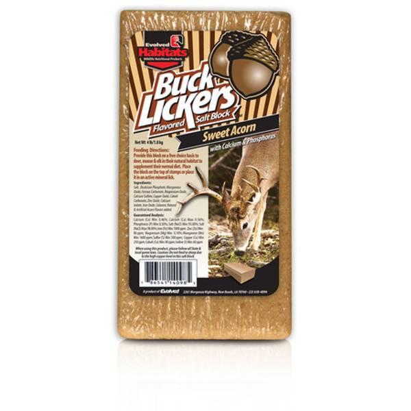 Why Do Deer Lick Salt Blocks