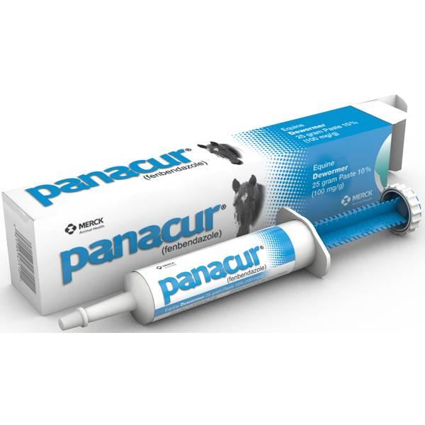Panacur (Fenbendazole 10%) Equine Paste Dewormer