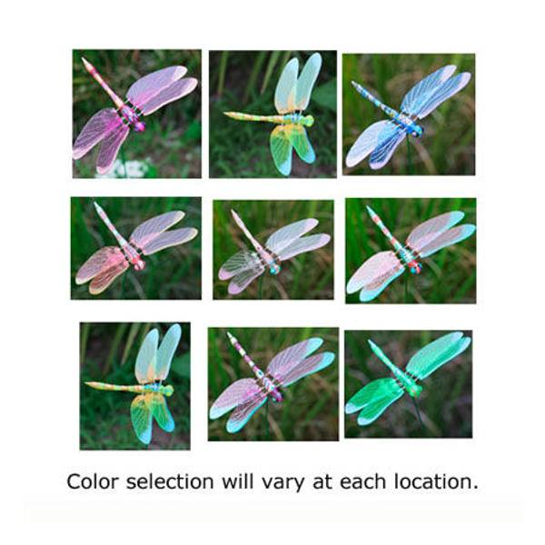 Dragonfly WindyWings Garden Stake Assortment