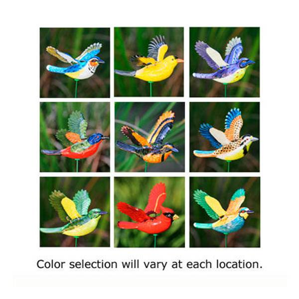 Songbird WindyWings Garden Stake Assortment