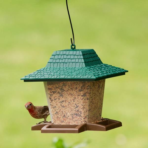 Seed Lantern Feeder