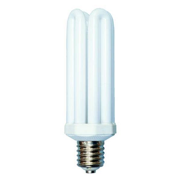 Fluorescent 4U Lamp