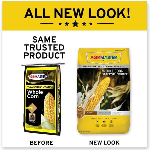 Whole Corn Feed