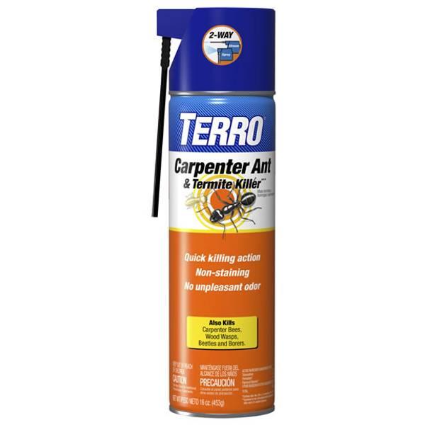 Carpenter Ant and Termite Control