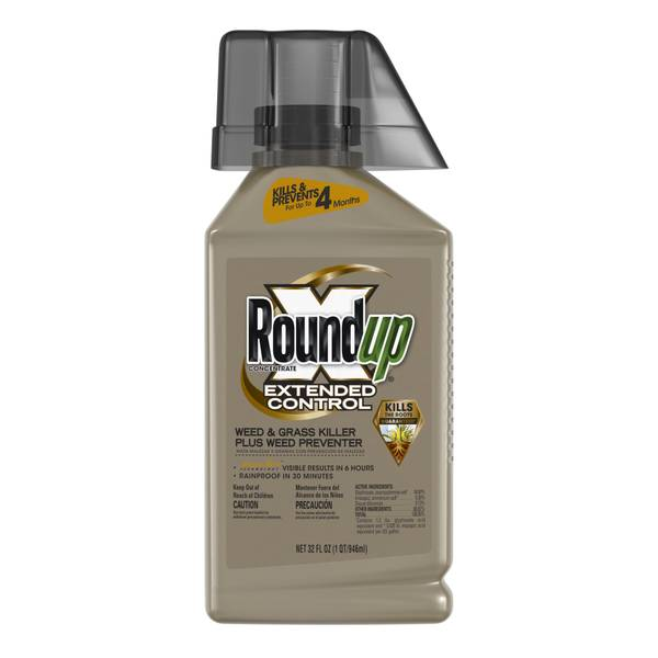 Extended Control Weed and Grass Killer Plus Weed Preventer