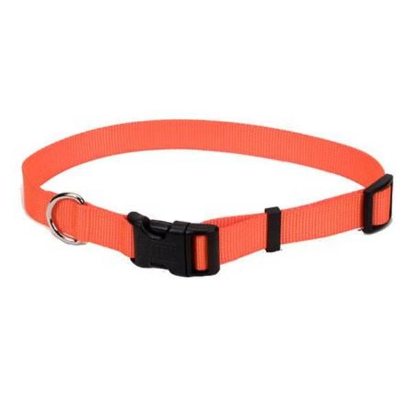 Adjustable Collar