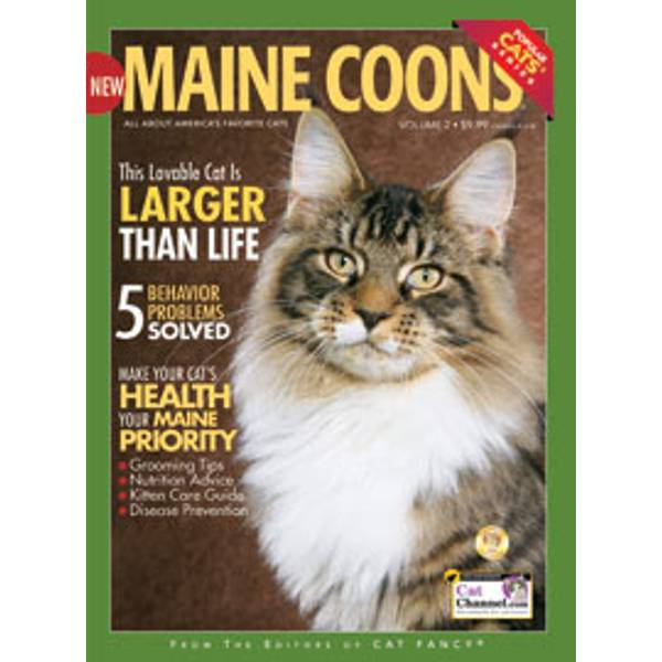 Maine Coons Magazine
