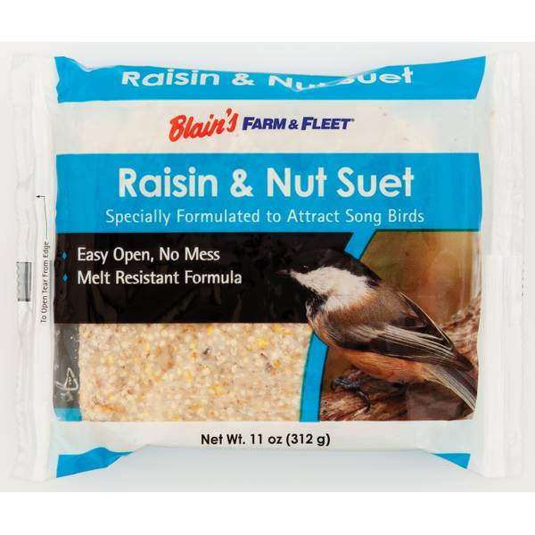 Raisin & Nut Suet