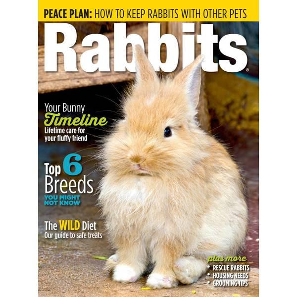 Rabbits USA Annual Magazine