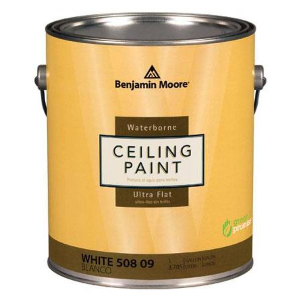 Benjamin Moore 1 Gallon Waterborne Ceiling Paint