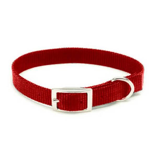 Red Nylon Collar