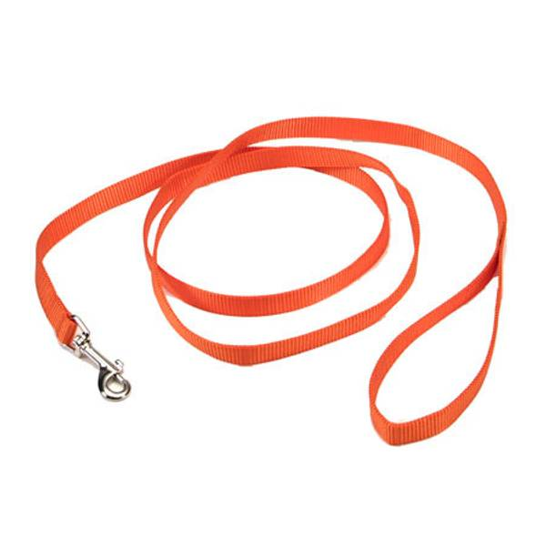 6' Sunset Orange Nylon Lead