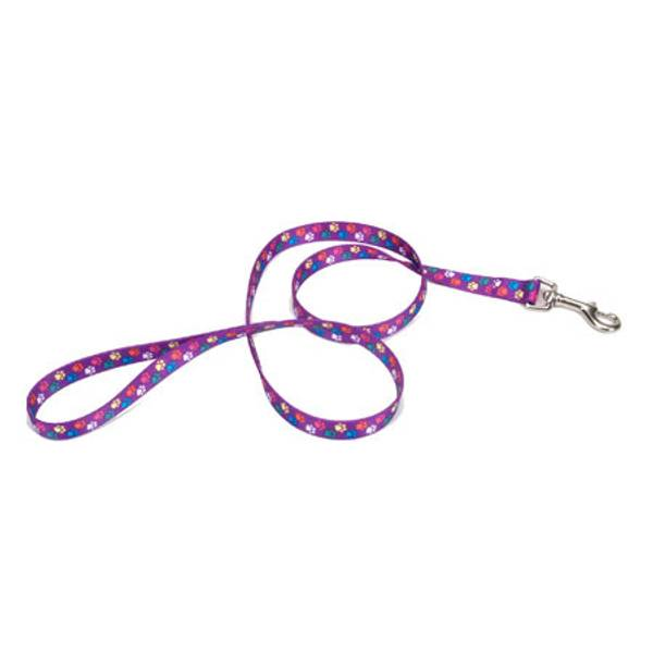 Pet Attire 6' Nylon Lead